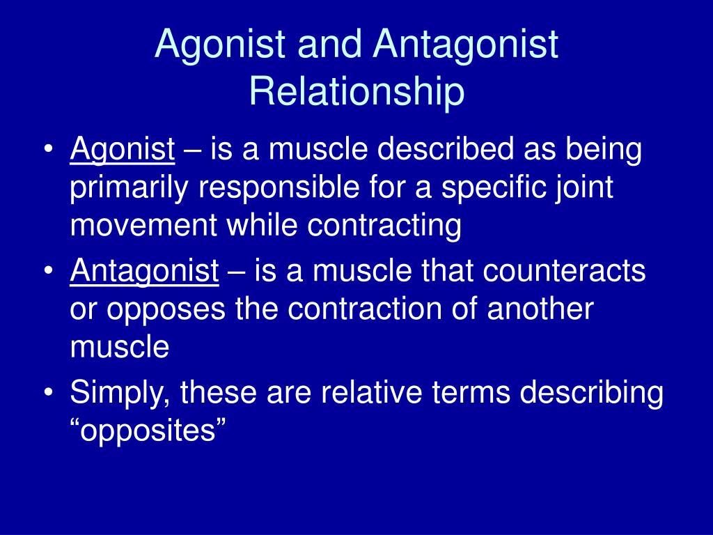 agonist and antagonist relationship l.
