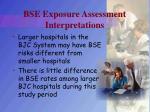 bse exposure assessment interpretations