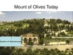 mount of olives today