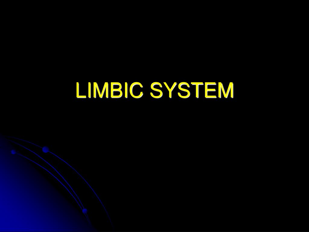 limbic system l.