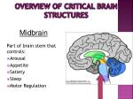 overview of critical brain structures10