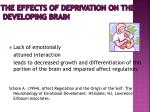 the effects of deprivation on the developing brain16