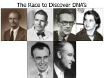 the race to discover dna s structure