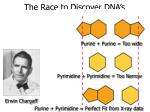 the race to discover dna s structure19