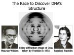 the race to discover dna s structure20