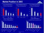 market position in 2003