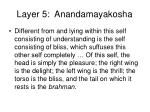 layer 5 anandamayakosha
