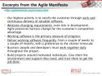 excerpts from the agile manifesto