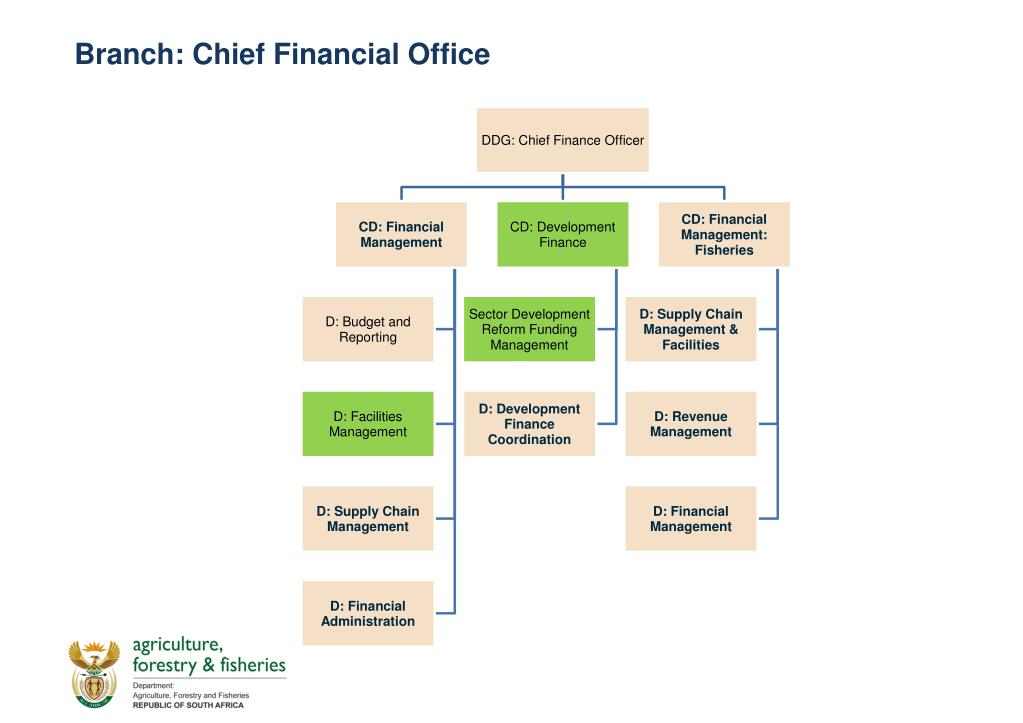 Branch: Chief Financial Office