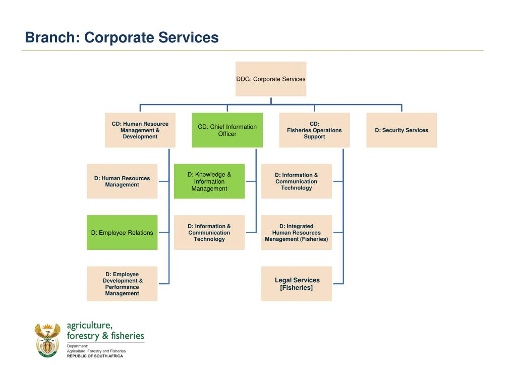Branch: Corporate Services