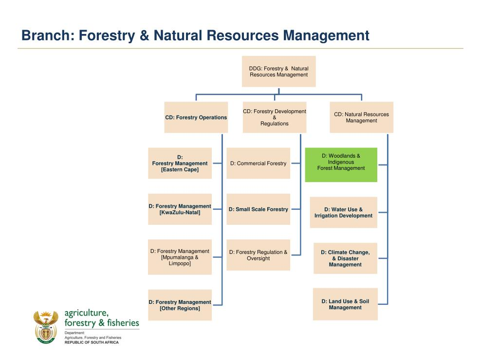 Branch: Forestry & Natural Resources Management