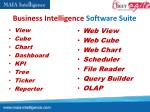 business intelligence software suite