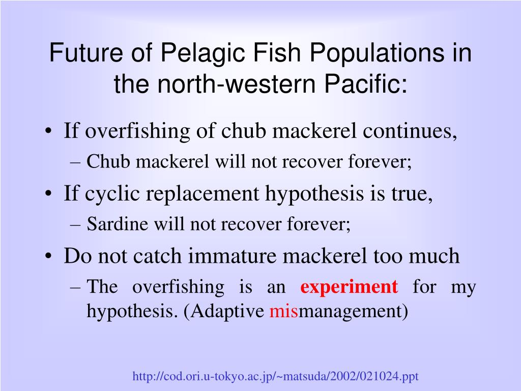 Future of Pelagic Fish Populations in the north-western Pacific: