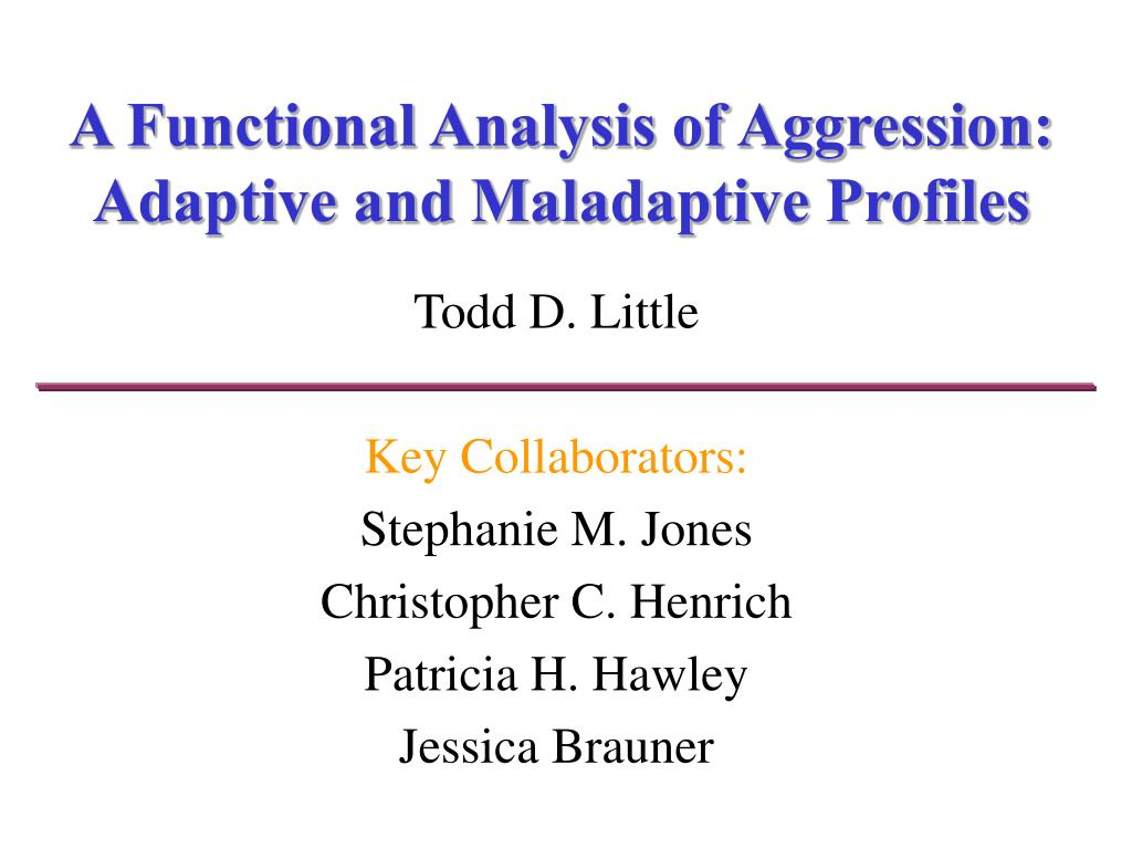 a functional analysis of aggression adaptive and maladaptive profiles