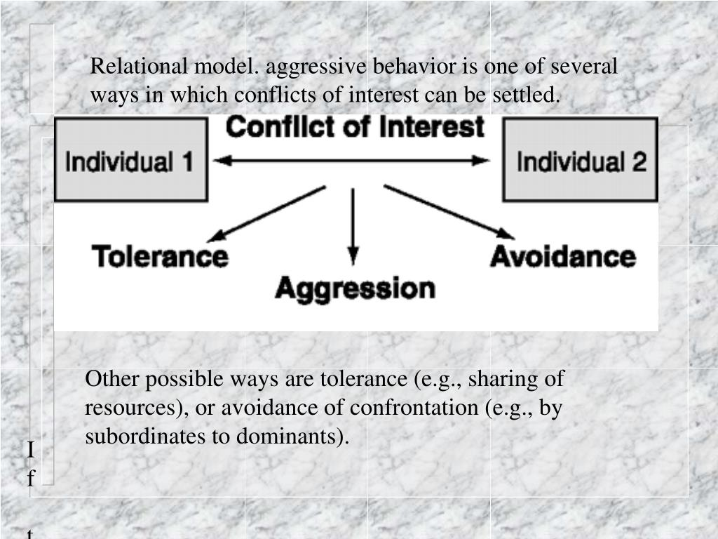 Relational model. aggressive behavior is one of several ways in which conflicts of interest can be settled.