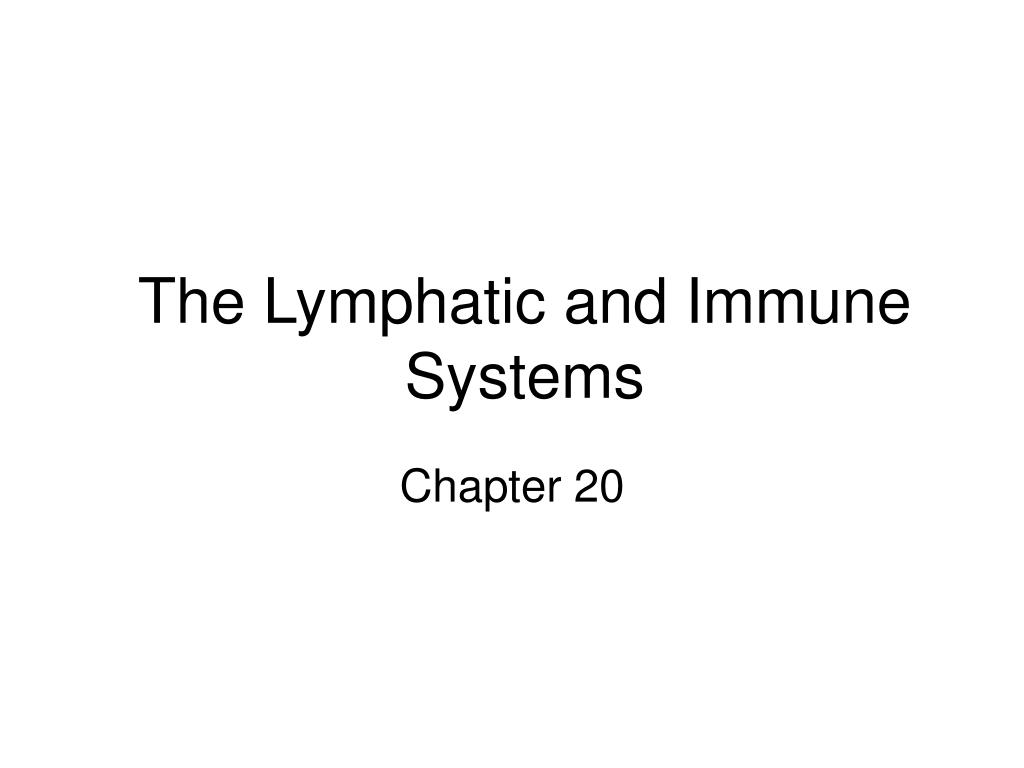 the lymphatic and immune systems l.