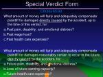 special verdict form