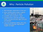 why particle pollution