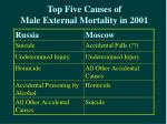 top five causes of male external mortality in 2001
