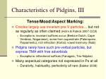 characteristics of pidgins iii