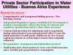 private sector participation in water utilities buenos aires experience25