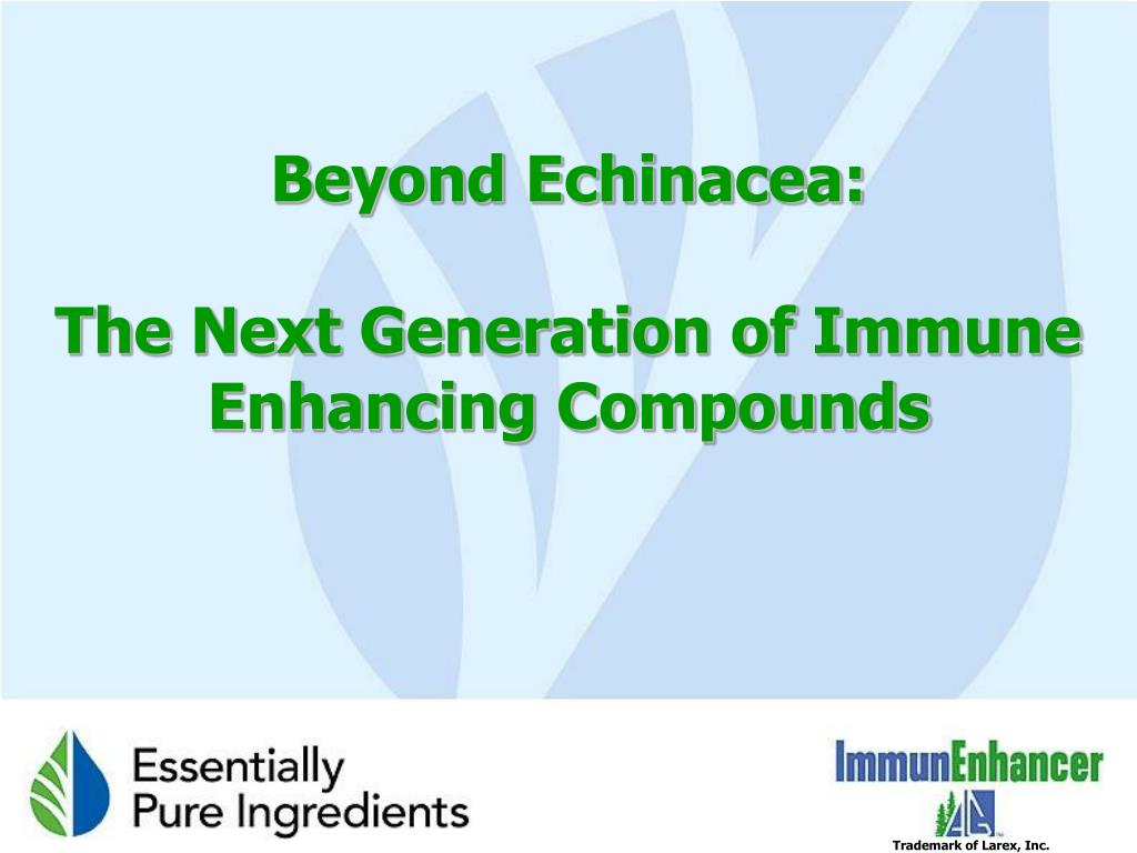 beyond echinacea the next generation of immune enhancing compounds l.