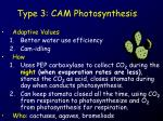 type 3 cam photosynthesis