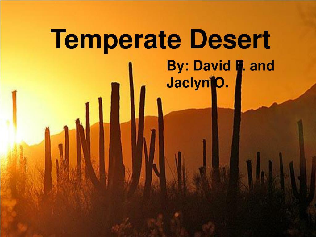 temperate desert l.