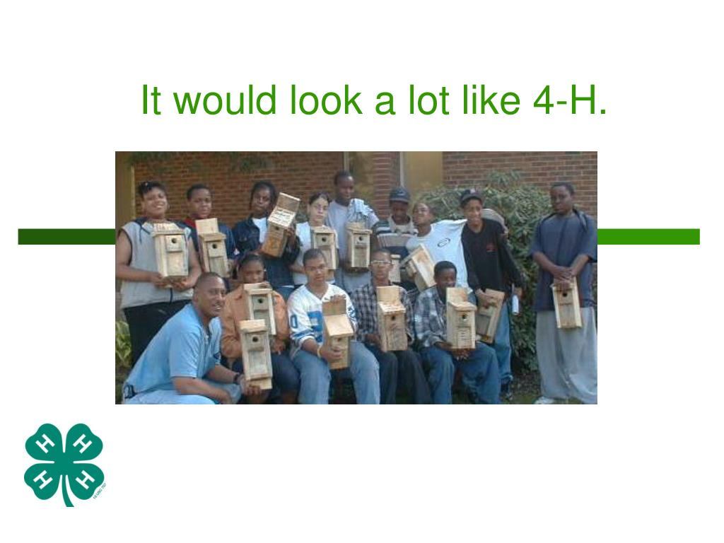 It would look a lot like 4-H.