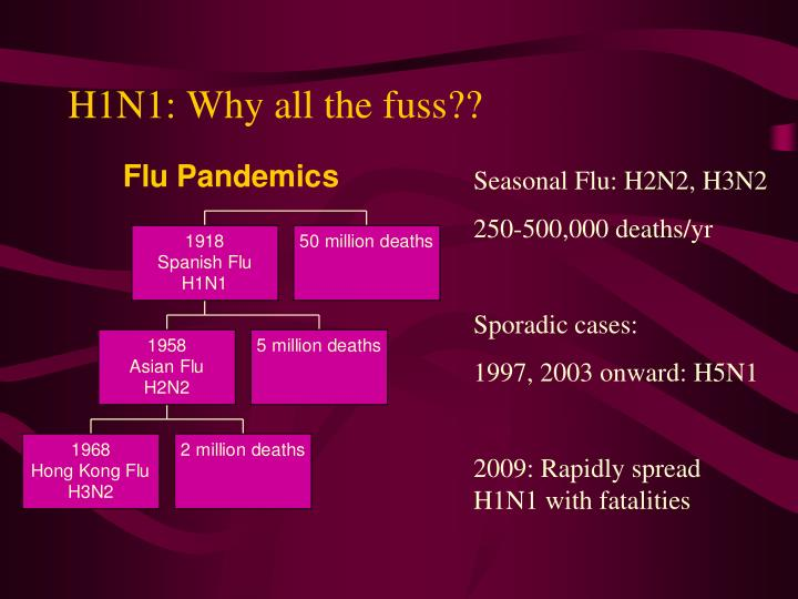 H1n1 why all the fuss