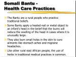 somali bantu health care practices
