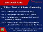 learn a grief model