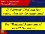 what is the pain of normal grief