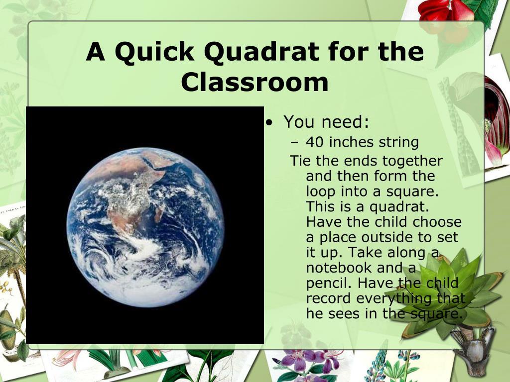 A Quick Quadrat for the Classroom