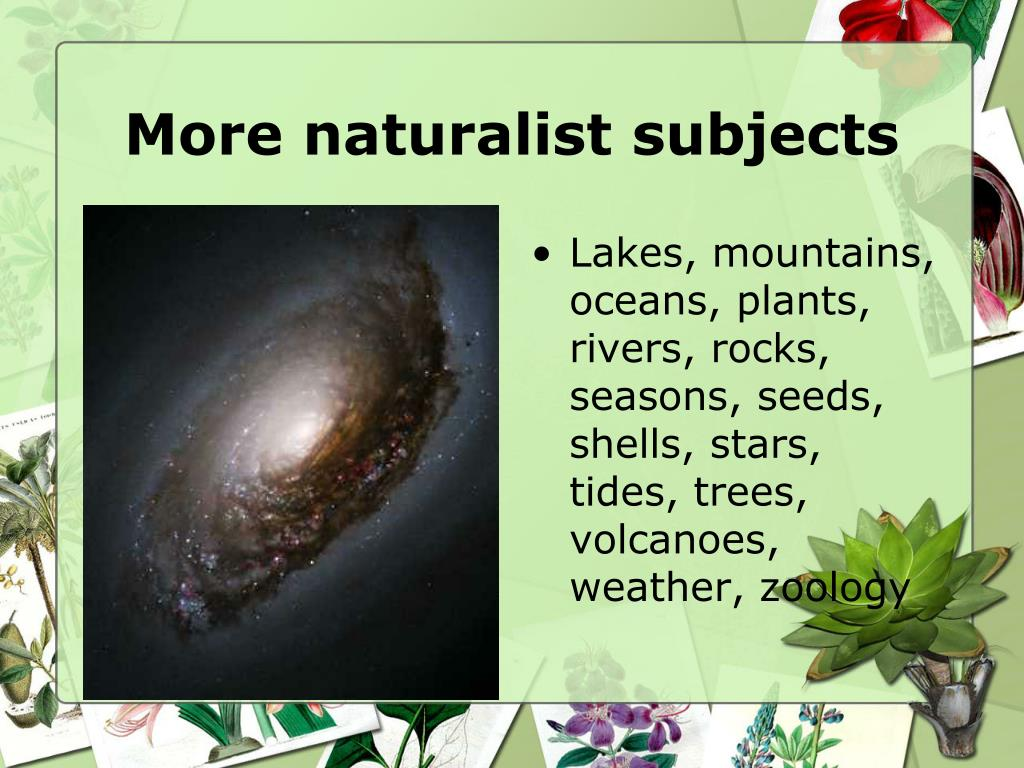 More naturalist subjects