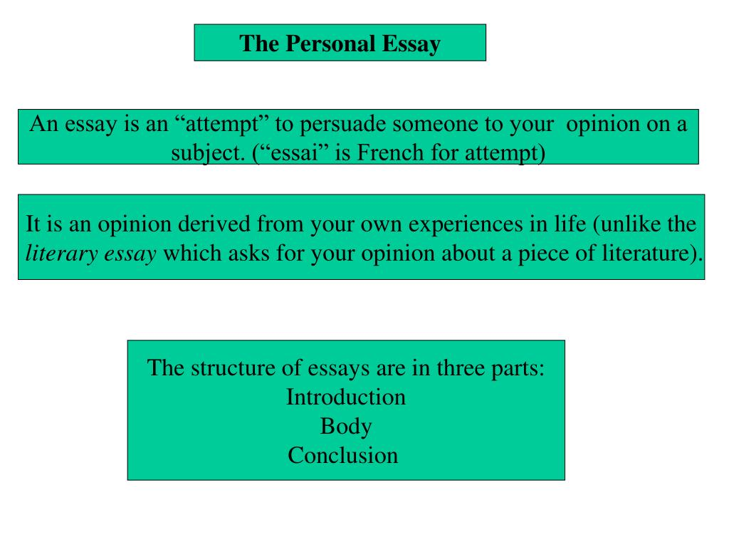 structure of a personal opinion essay