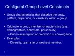 configural group level constructs