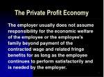 the private profit economy36