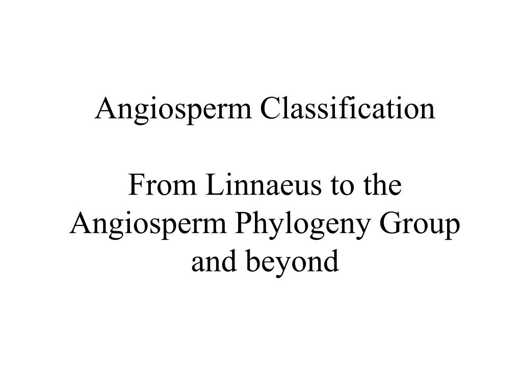 angiosperm classification from linnaeus to the angiosperm phylogeny group and beyond l.