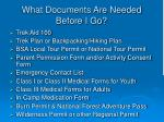 what documents are needed before i go