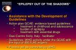 epilepsy out of the shadows21