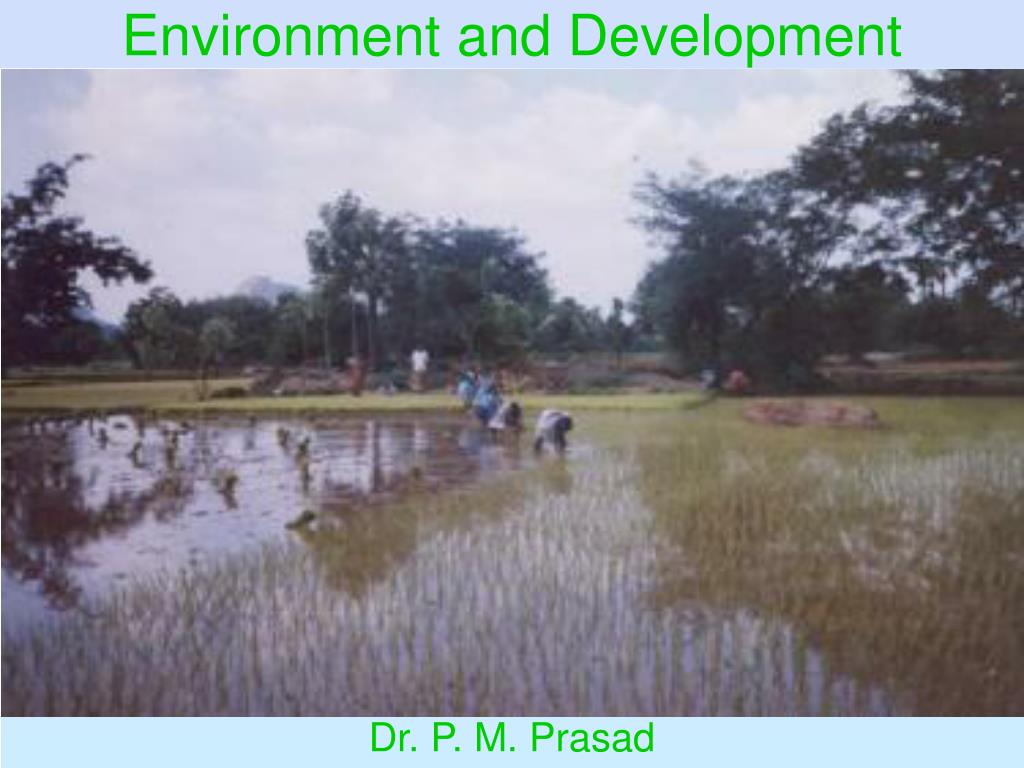 environment and development l.