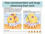 how neurotrasmitters and drugs influencing them work