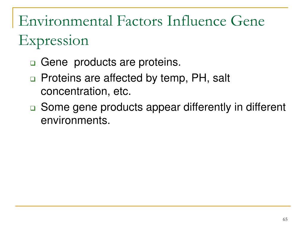 Environmental Factors Influence Gene Expression