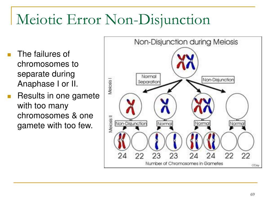 Meiotic Error Non-Disjunction