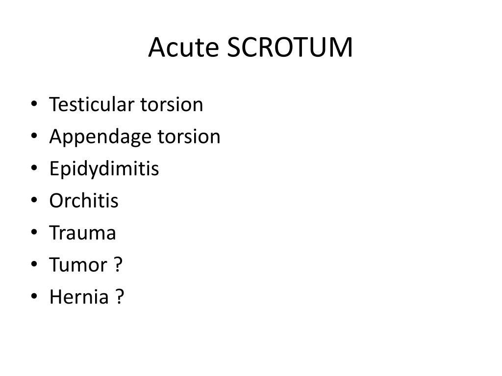 acute scrotum l.