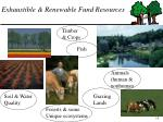 exhaustible renewable fund resources