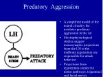 predatory aggression40