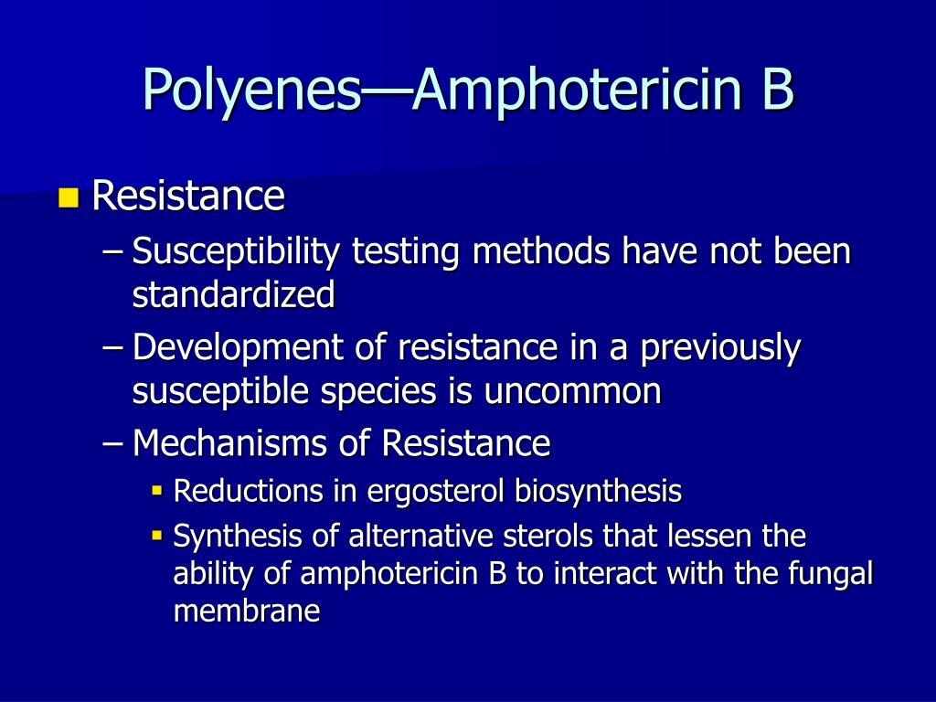 Polyenes—Amphotericin B