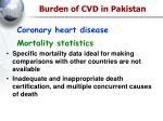 burden of cvd in pakistan
